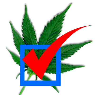 With a recall election at stake High Voter Turnout is Expected in a California Cannabis Colony election.